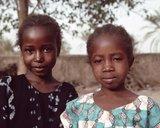 Illustration de la page Bambara (peuple d'Afrique) provenant de Wikipedia