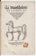 Illustration de la page Lorenzo Rusio (1288-1347) provenant de Wikipedia
