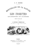 Illustration de la page Jules Künckel d'Herculais (1843-1918) provenant de Wikipedia