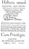 Bildung aus Gallica über Remaclus Fuchs (1510?-1587)