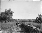 Village chrétien de Jifnah et village de la montagne du côté de Rentis