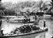Transport de bois sur les canaux  1929