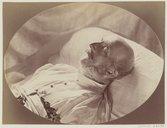 Illustration de la page Georges V (roi de Hanovre, 1819-1878) provenant de Wikipedia