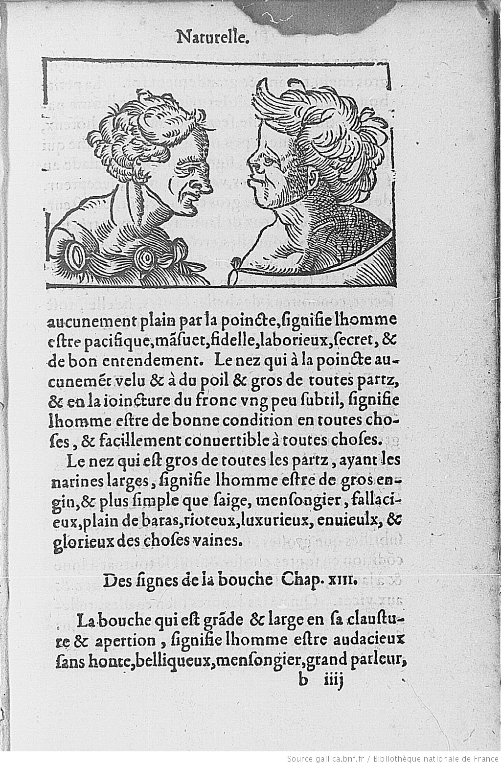 [Illustrations de Le compendion et brief enseignement de physiognomie] / [Non identifié] ; Bartholomeo della Rocca dit Cocles, aut. du texte - 15