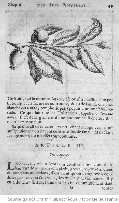 http://gallica.bnf.fr/ark:/12148/btv1b23000062/f1.item.highres