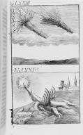 Fig.LXXIII : Phénomène observé en l'an 1542 . Fig.LXXIV : Phénomène observé lors du passage de la comète de l'an 1543 . [Cote :2525A]
