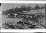 Illustration de la page Kalimantan Tengah (Indonésie) provenant de Wikipedia
