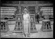 Bildung aus Gallica über Jeanne Provost (1887-1980)