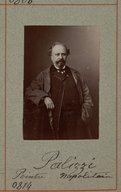 Illustration de la page Giuseppe Palizzi (1812-1888) provenant de Wikipedia