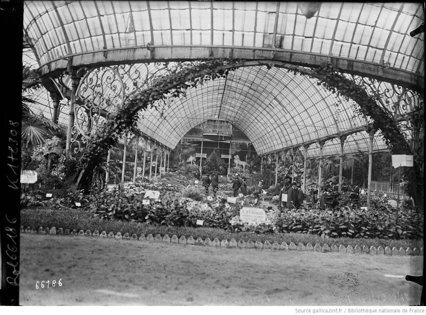 20 5 21 exposition d 39 horticulture palmarium du jardin d for Jardin d acclimatation