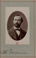 Illustration de la page Tullo Massarani (1826-1905) provenant de Wikipedia