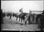 Image from Gallica about Courses de chevaux