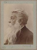 Illustration de la page Ernest Meissonier (1815-1891) provenant de Wikipedia