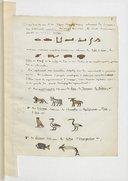 Grammaire égyptienne. Manuscrits et imprimés  Champollion le jeune. 1836
