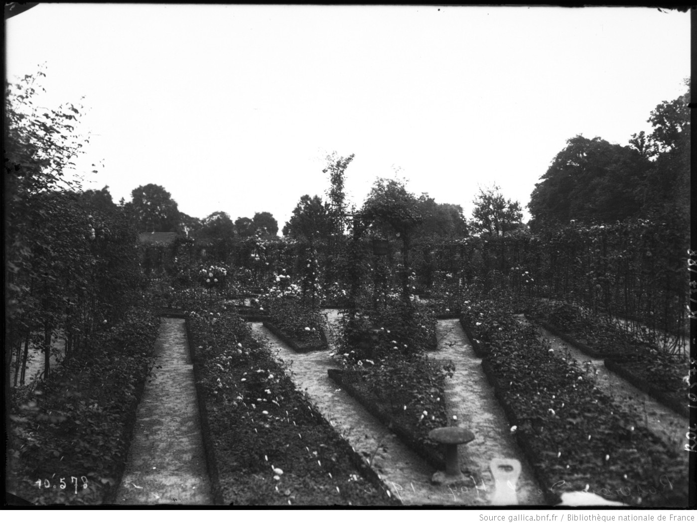 Roseraie de l 39 hay les roses val de marne 1910 for Agence val de marne