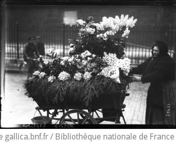 Marchande de fleurs [fleurs sur un petit chariot tiré par une marchande] : [photographie de presse] / [Agence Rol]