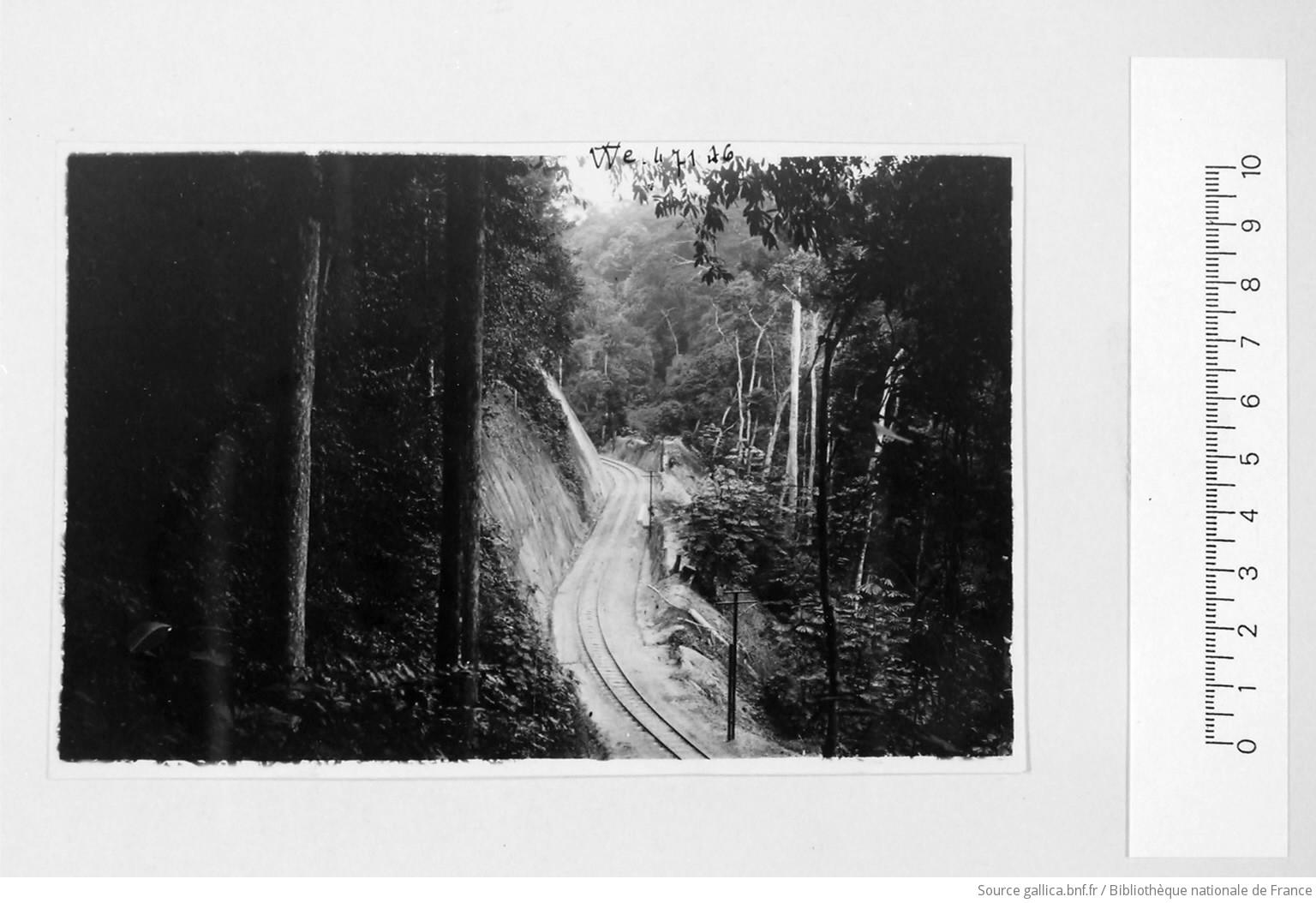 [39 phot. d'A.E.F. en 1924. Enregistré en 1936] - 16