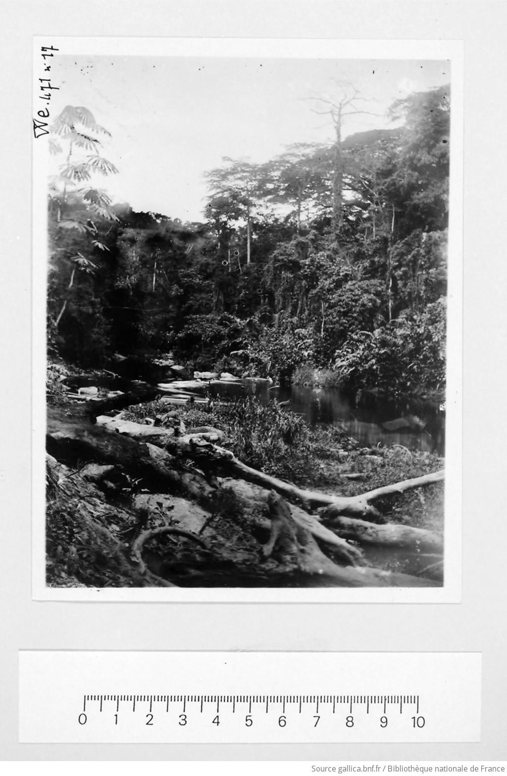 [39 phot. d'A.E.F. en 1924. Enregistré en 1936] - 17