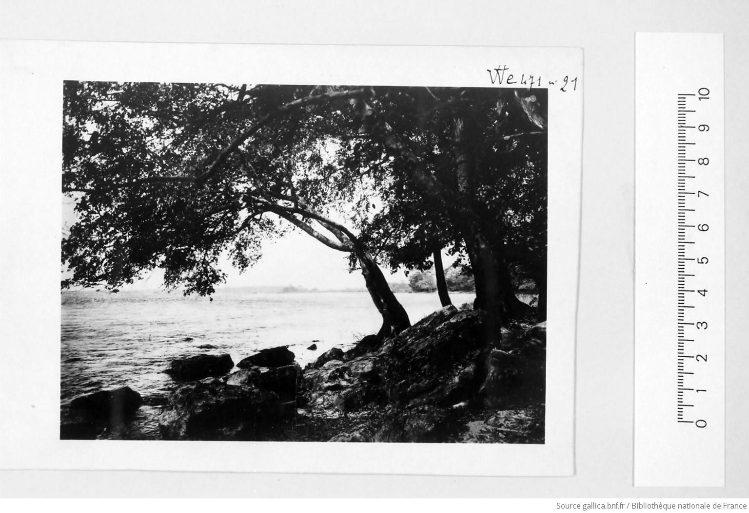 [39 phot. d'A.E.F. en 1924. Enregistré en 1936] - 21