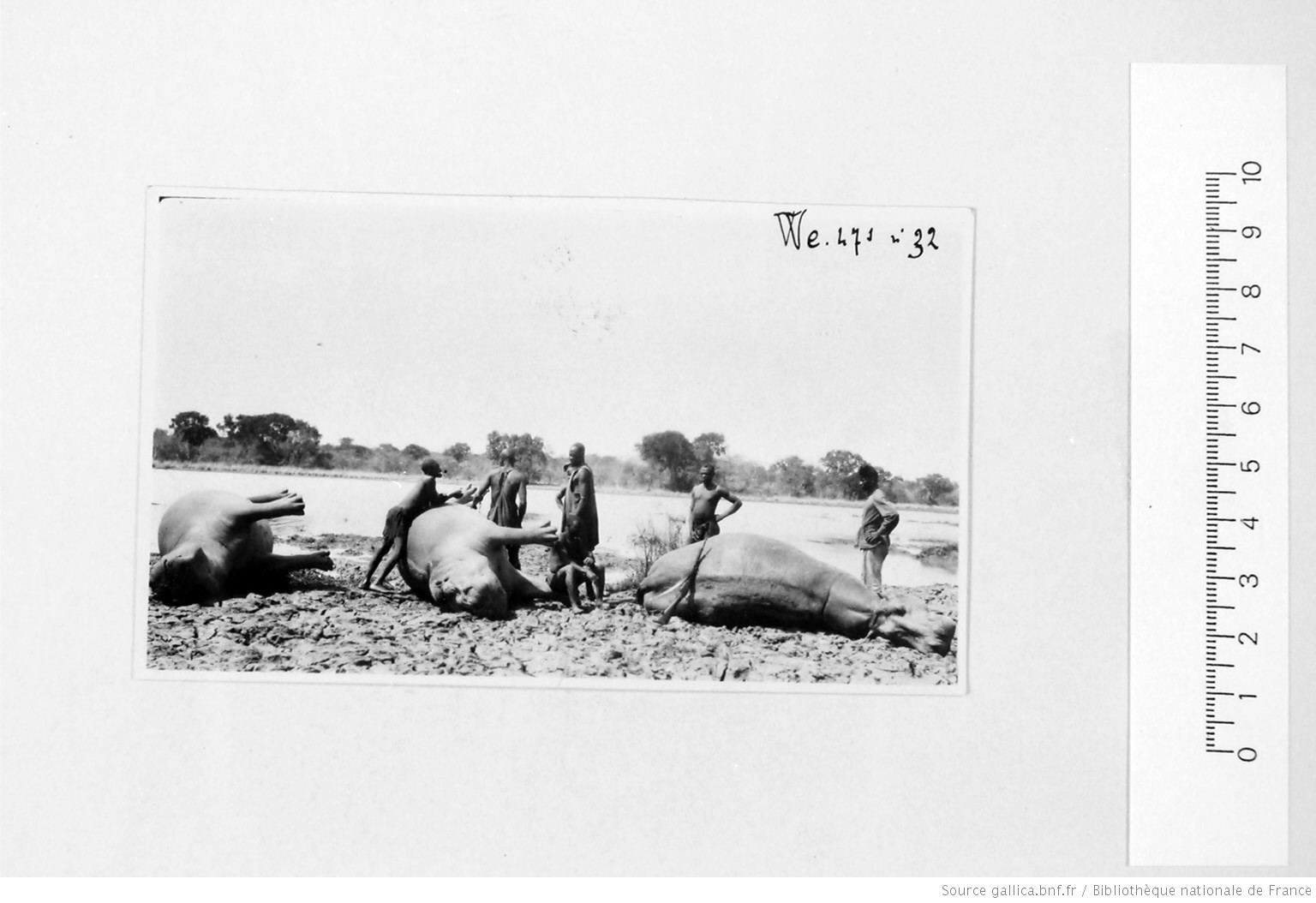 [39 phot. d'A.E.F. en 1924. Enregistré en 1936] - 30