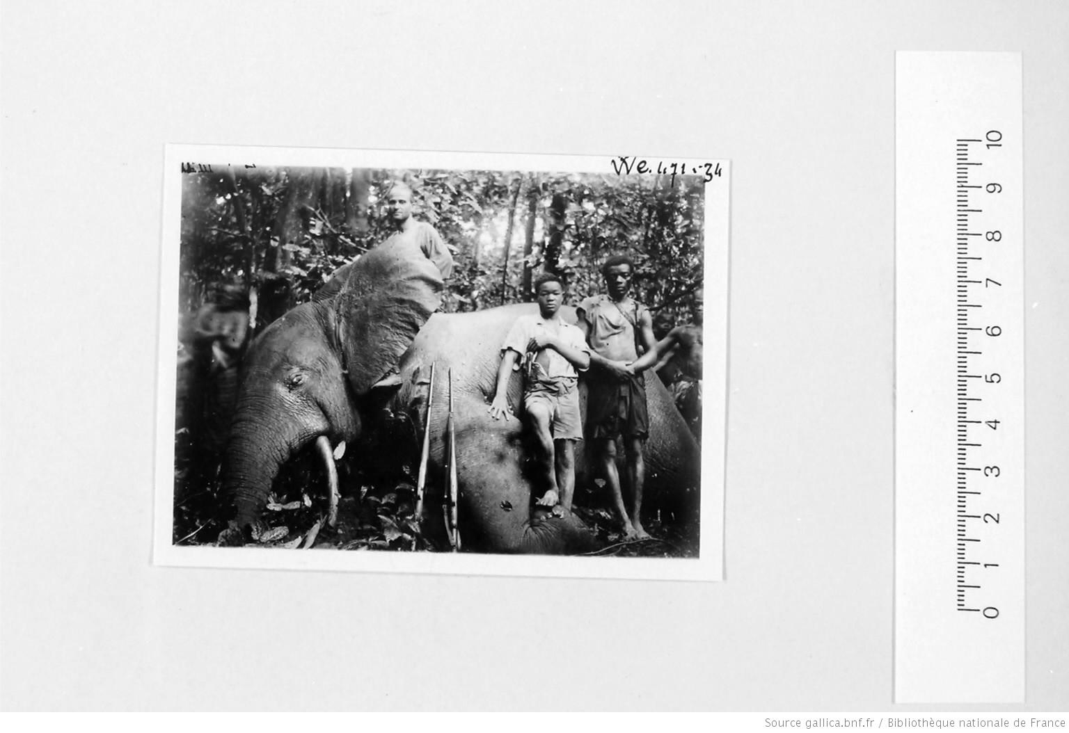 [39 phot. d'A.E.F. en 1924. Enregistré en 1936] - 32