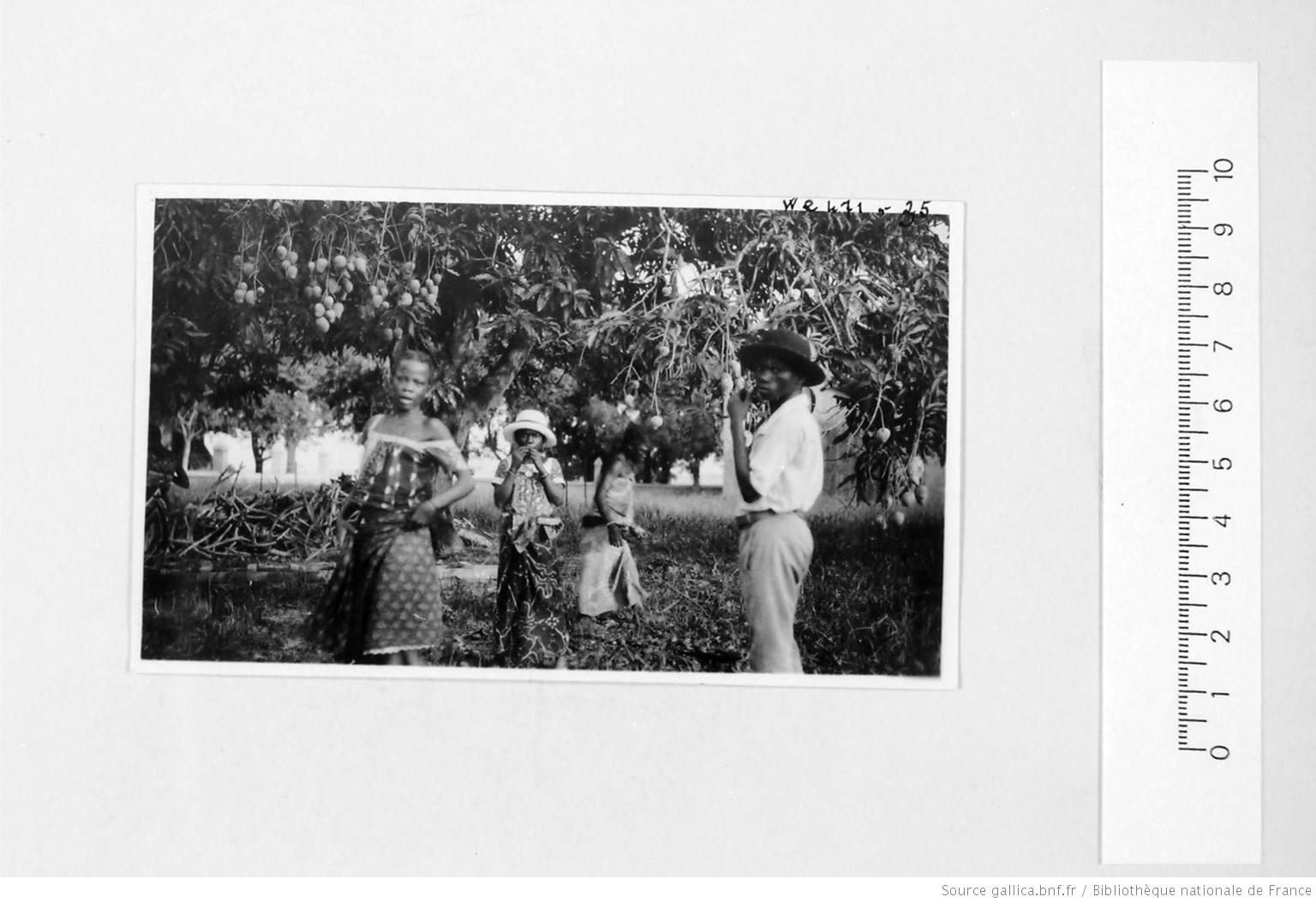 [39 phot. d'A.E.F. en 1924. Enregistré en 1936] - 33