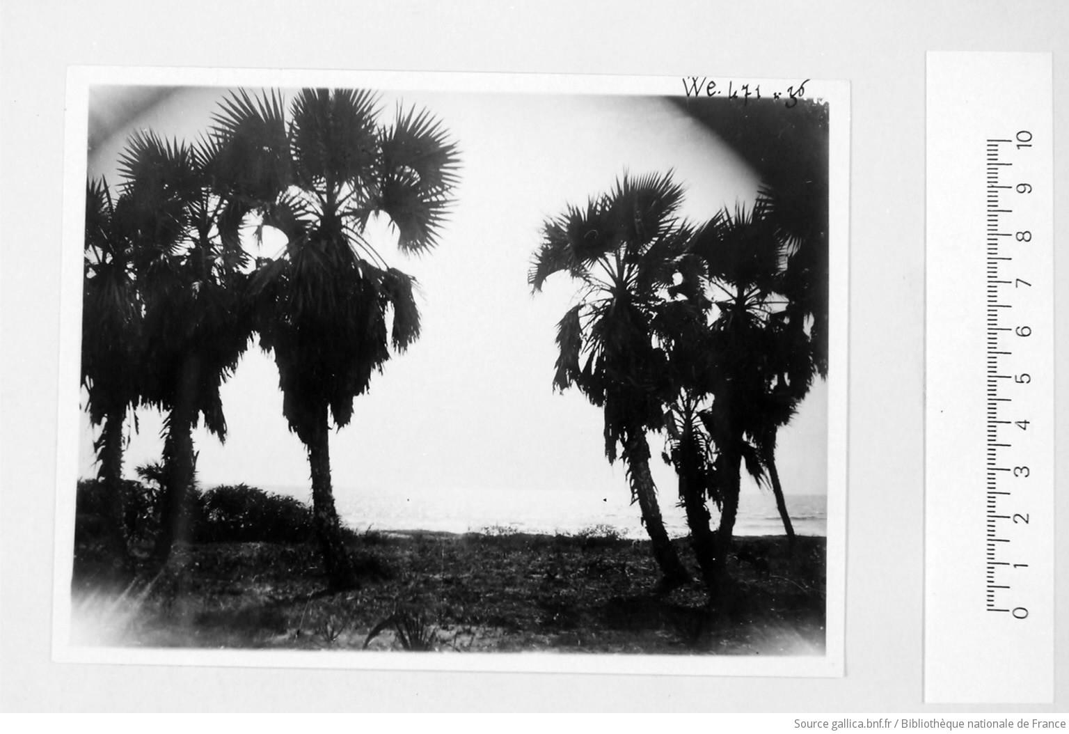 [39 phot. d'A.E.F. en 1924. Enregistré en 1936] - 34