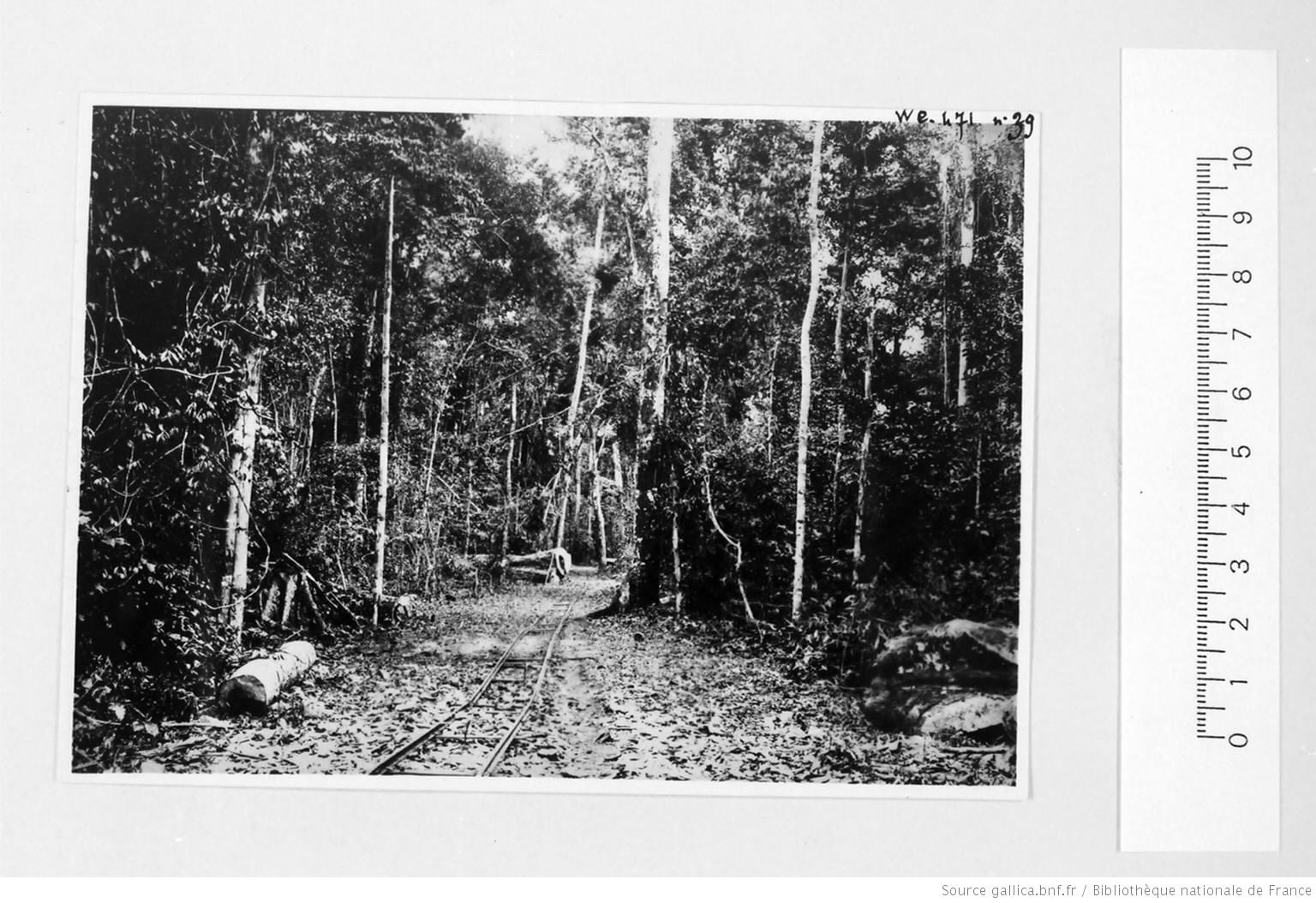 [39 phot. d'A.E.F. en 1924. Enregistré en 1936] - 37