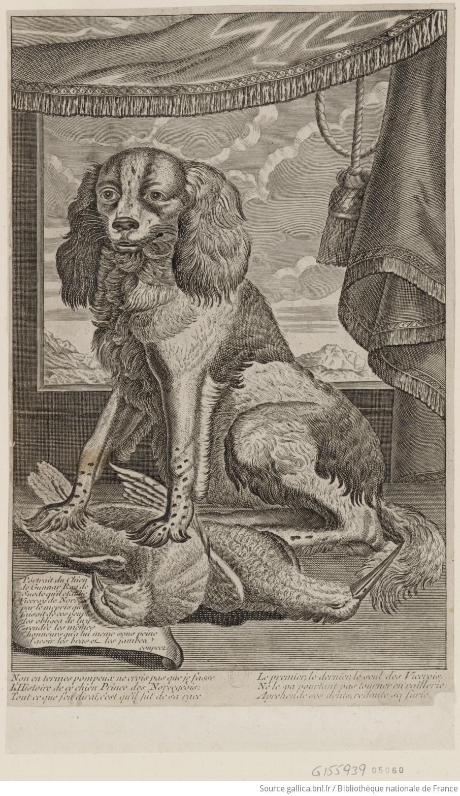 Portrait du chien de Gunnar