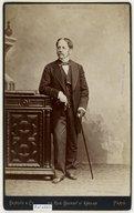 Illustration de la page Felix James Ryan (1813-1883) provenant de Wikipedia