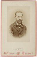 Illustration de la page Luigi Bombicci (1833-1903) provenant de Wikipedia