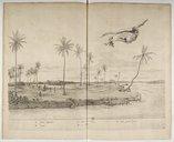 Gasparis Barlaei rerum per octennium in Brasilia (...)  C. Barlaeus. 1647