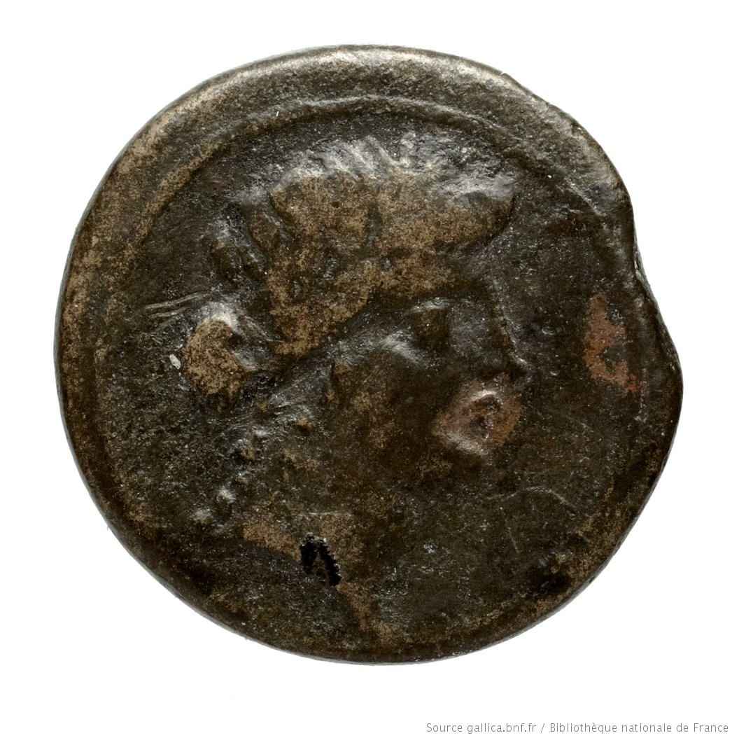 cn coin 1202