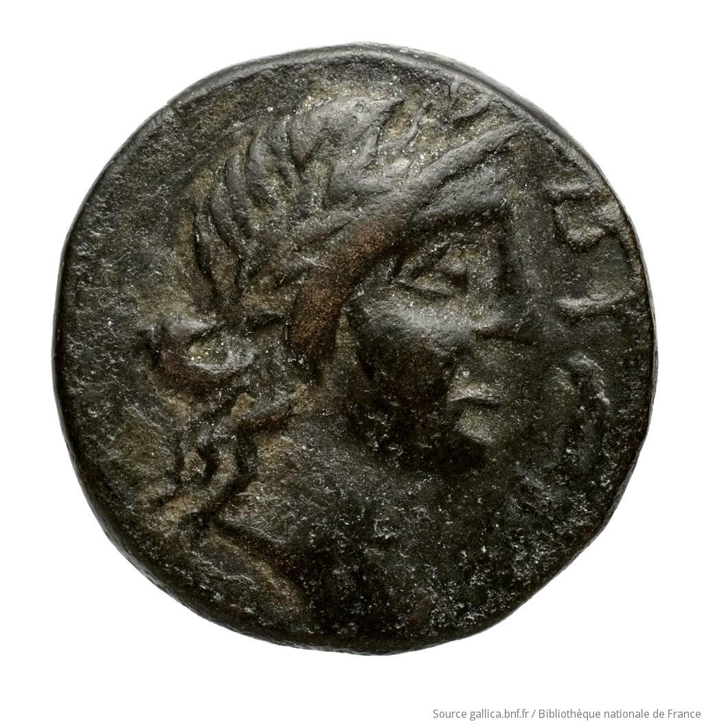 cn coin 1207