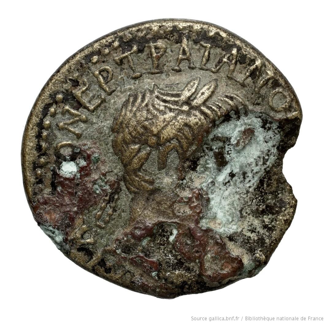 cn coin 230