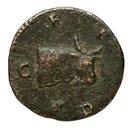coin reverse