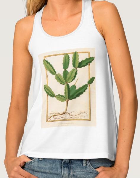 tshirtcactus.png