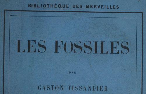 1850-1900_bibliotheque_merveilles_image1.jpg