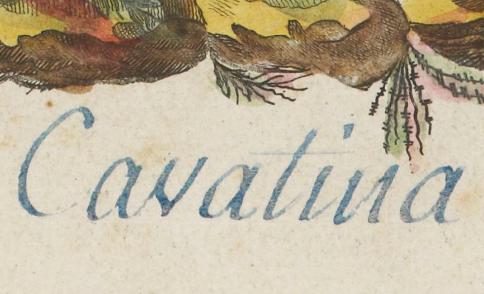 """Accéder à la page """"Cavatine"""""""