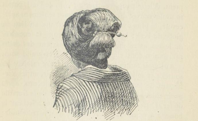 Raymond de Dalmas, Les Japonais, leur pays et leurs moeurs, 1885.