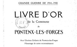 """Accéder à la page """"Fête de la Victoire dans un village français, 14 juillet 1919"""""""