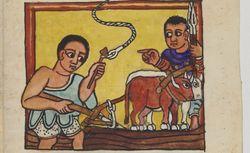 Ethiopien 619 Griaule 311