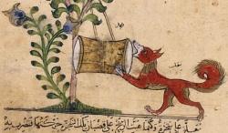 Fable : le renard et le tambour