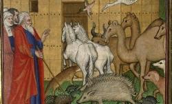 Français 9, fol. 15 : Noé entrant dans l'arche