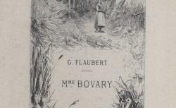 "Accéder à la page ""Madame Bovary"""