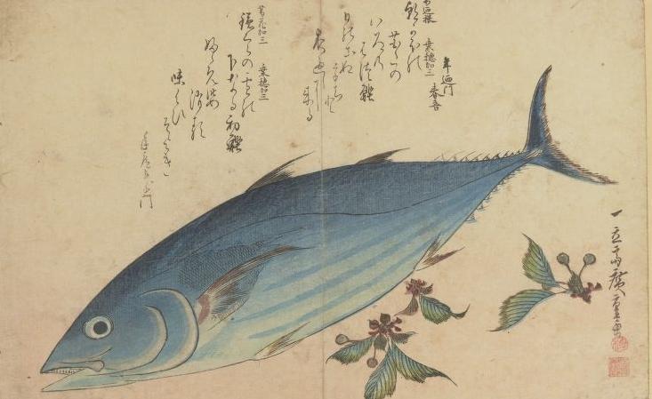 Hiroshige. Grands poissons. BOITE FOL-DE-10 (2)