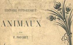 """Accéder à la page """"Pouchet, Félix-Archimède (1800-1872)"""""""