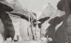 Cameroun : magazine trimestriel