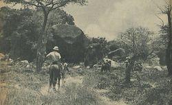 Quand l'or était vivant : aventures au Tchad
