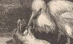 """Accéder à la page """"Vingt fables de La Fontaine, ill. Eugène Lambert, 1870/1903 (Bibliothèque de Mademoiselle Lili)"""""""